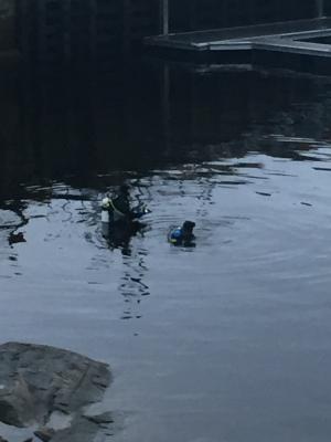 Hé oui, on peut faire de la plongée sous-marine à Ste-Rose!