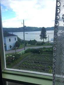 Le potager vue de ma chambre!