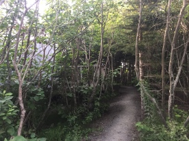 Les sentiers