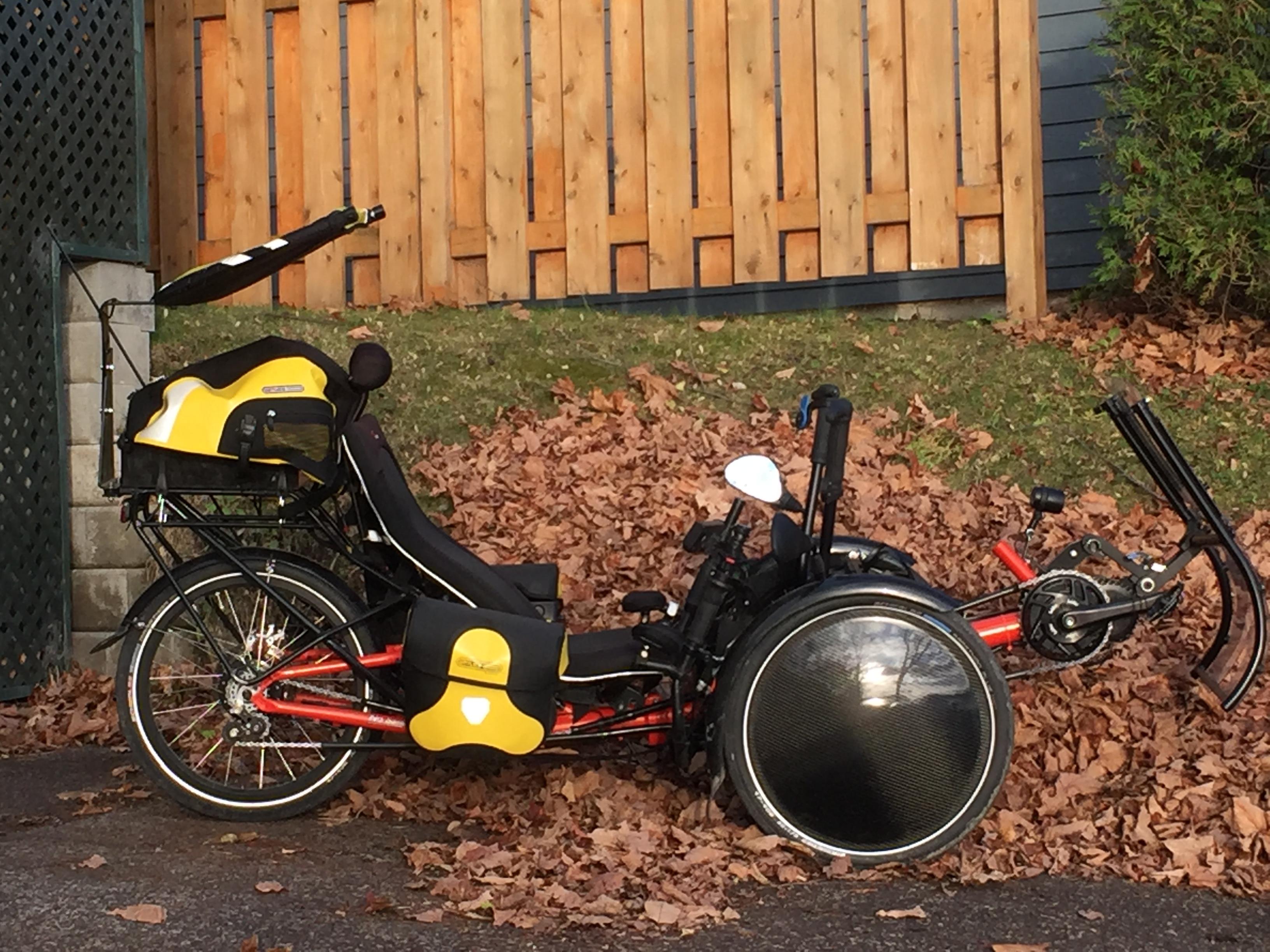 Trike Cap-Roue