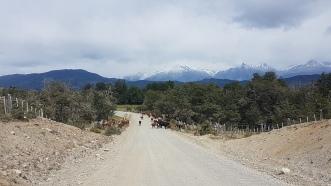 On rencontre souvent du bétail (Moutons, Chevres, Vaches) sur la route.