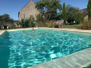 La piscine et le jardin