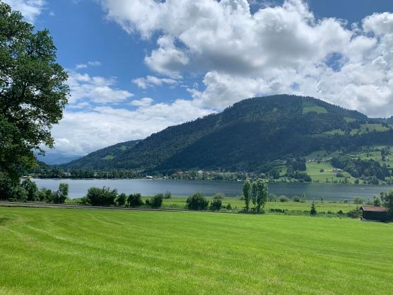 Autriche Suisse (31)