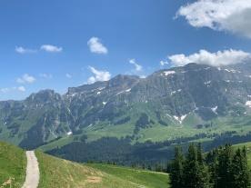 Autriche Suisse (60)