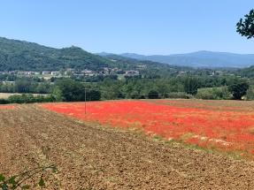 Italie (303)